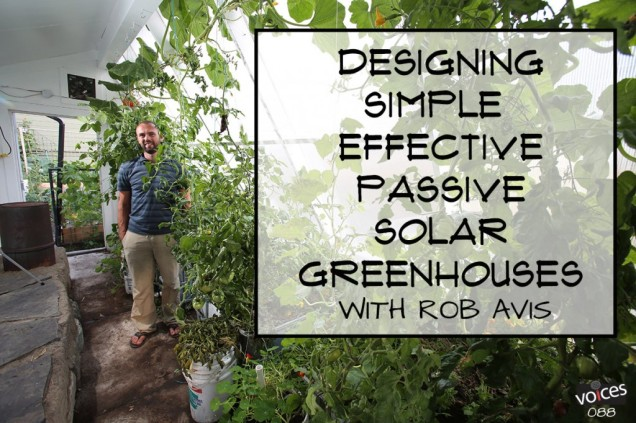 Rob-Avis-Permaculture-Voices-1024x682